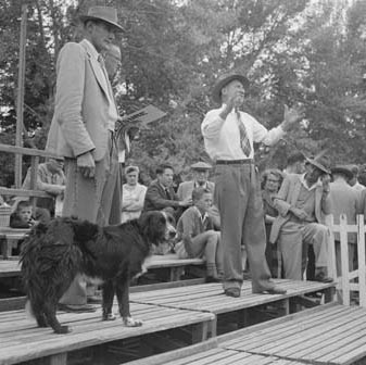 1958 National Sheep Dog Trials in Canberra ACT
