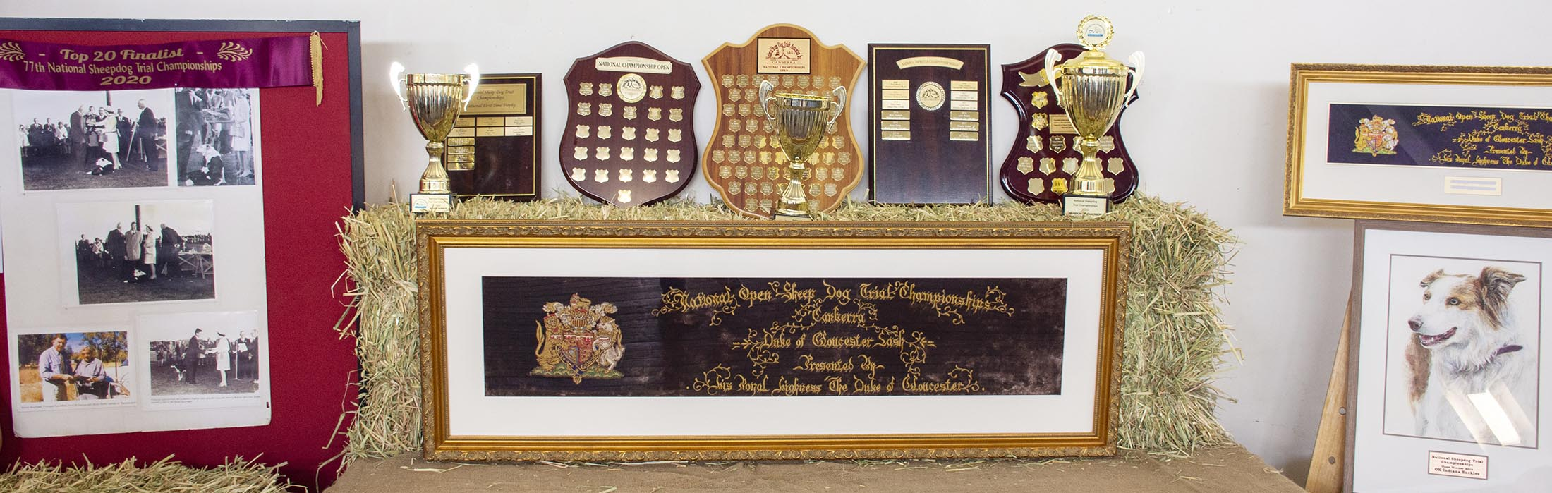 National Sheep Dog Trials Prizes and Trophies